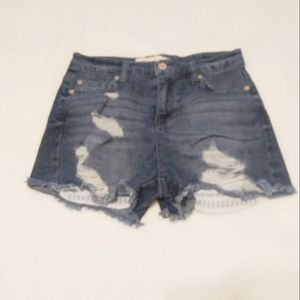 Altar'd State Distressed Shorts Size 25